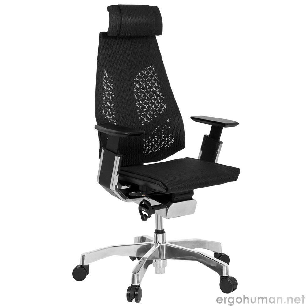 Genidia Mesh Office Chair